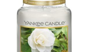 Yankee Candle Camelia su amazon.com