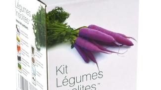 Il Kit ortaggi su amazon.com