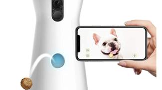 Furbo - VIDEOCAMERA per Cani su amazon.com