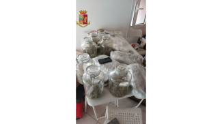 La marijuana è stata recuperata in due abitazioni