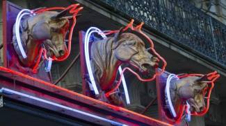 Sequestrato macello equino a Varese: evadeva le regole sulla tracciabilità delle carni