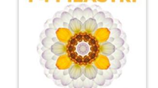 I 4 pilastri della felicità su amazon.com