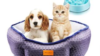 Cuccia per Gatti e Cani su amazon.com