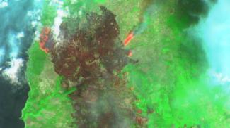 L'immagine ripresa dal satellite