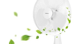Aigostar - Ventilatore da tavolo su amazon.com