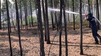 Incendi in Siberia (Ansa)