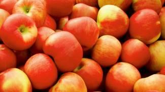 Mele, foto generica: sono antiossidanti e antitumorali
