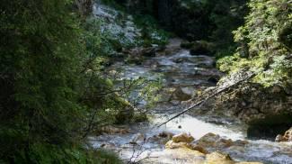 Ruscello di montagna in una foto L.Gallitto